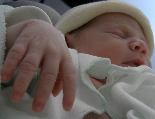 El Nacimiento y Parto de Elia